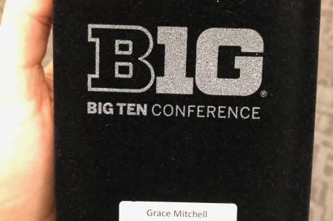 Big Ten Distinguished Scholar Award