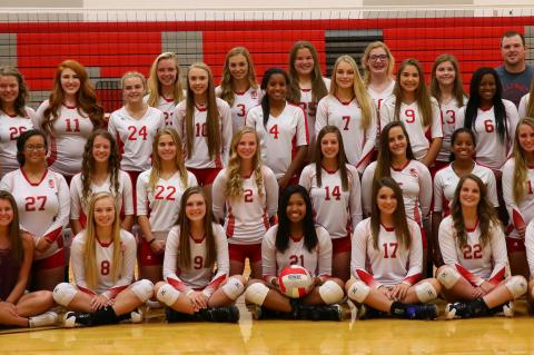2017 Volleyball Team